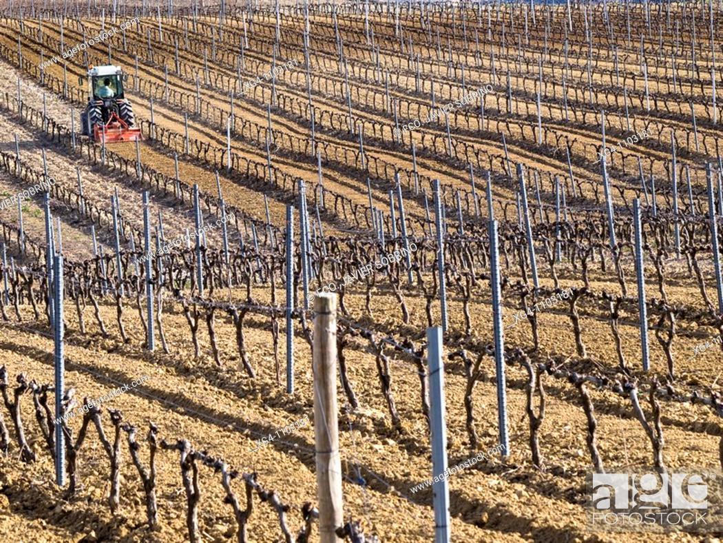 Stock Photo: Tractor labrando en unos viñedos en invierno en el Villar de Álava - Rioja Alavesa - Álava - País Vasco - Euskadi - España.