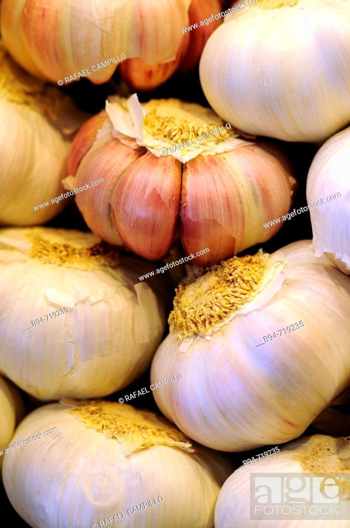 Stock Photo: Garlic for sale at La Boqueria market, Barcelona. Catalonia, Spain.