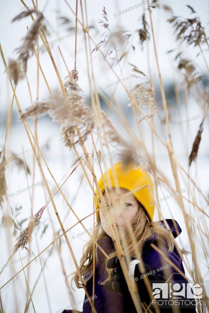 Stock Photo: Girl looking through grass< Sweden.