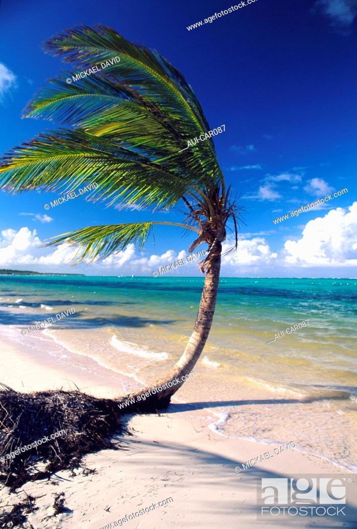 Stock Photo: Caribbean - Dominican Republic - Punta Cana.