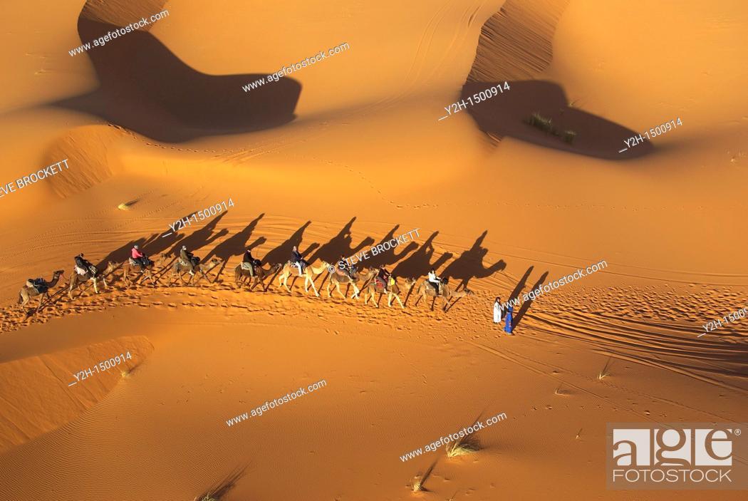 Stock Photo: aerial view of camel caravan on sand dunes erg chebbi.