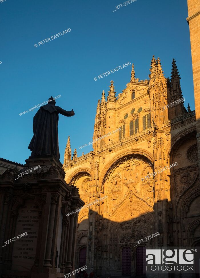 Imagen: Evening light on the sandstone facade and bell tower of the New Cathedral, Salamanca, Spain.