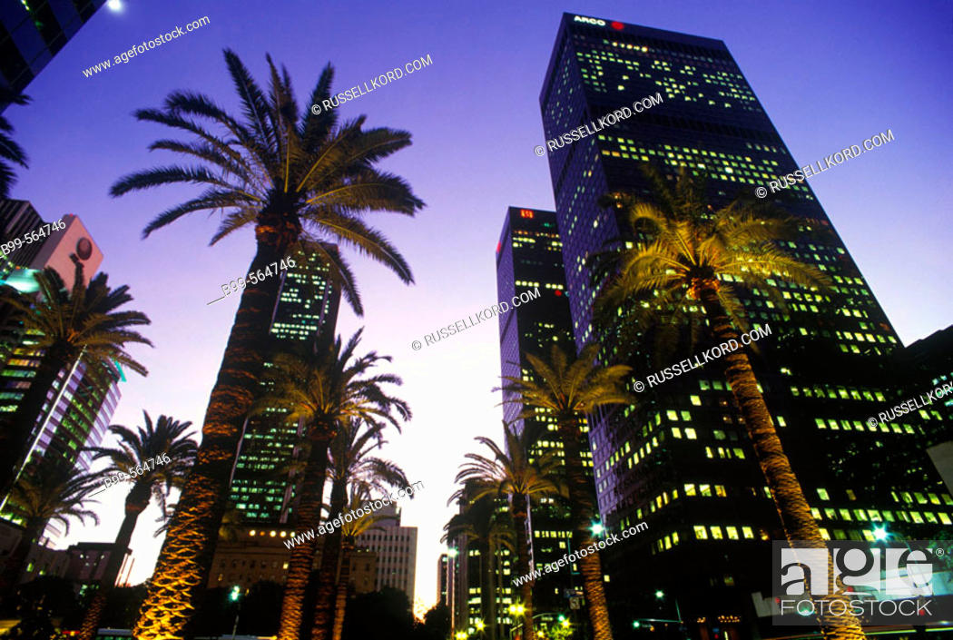 Stock Photo: Palm Trees, Figueroa Street, Downtown, Los Angeles, California, Usa.