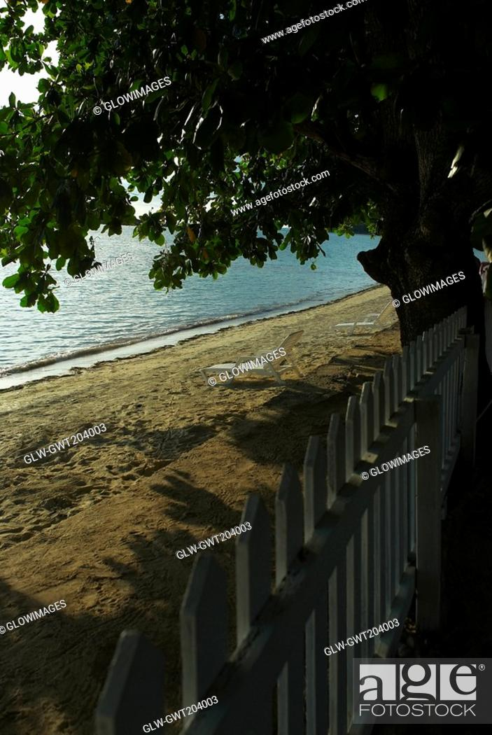Stock Photo: Picket fence at the seaside, South West Bay, Providencia, Providencia y Santa Catalina, San Andres y Providencia Department, Colombia.