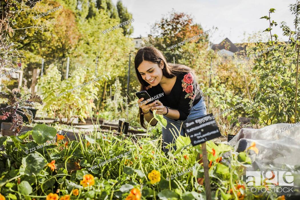 Imagen: Happy young woman taking pictures with smartphone in urban garden.