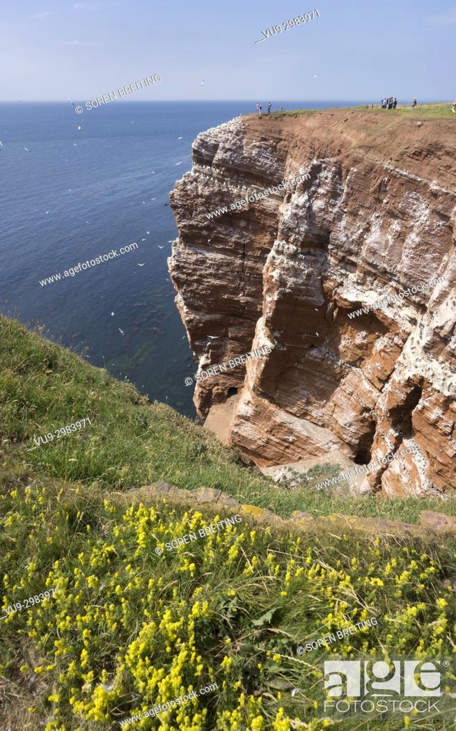 Stock Photo: Helgoland German island with red sandstone cliffs, Germany.