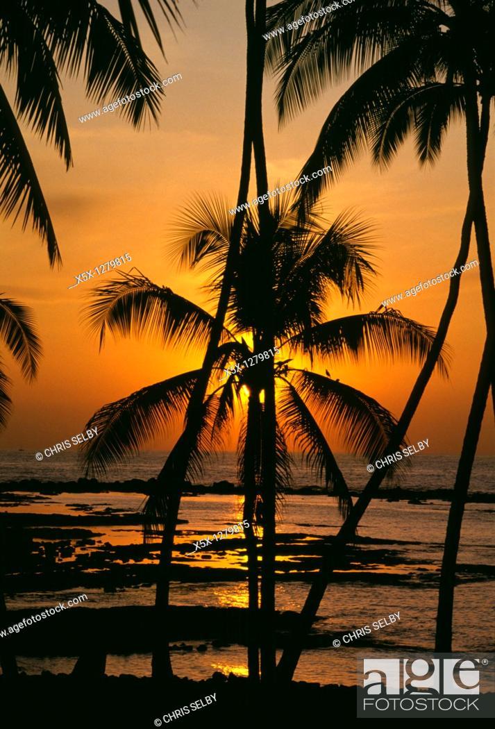 Stock Photo: Sunset behind palm trees at Kahalu'u beach, Big Island, Hawaii, USA.