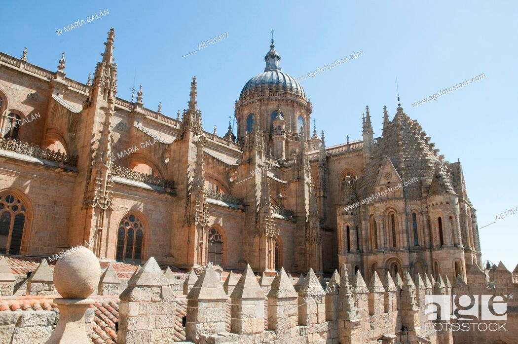 Imagen: Cathedral viewed from its terrace. Salamanca, Castilla León, Spain.