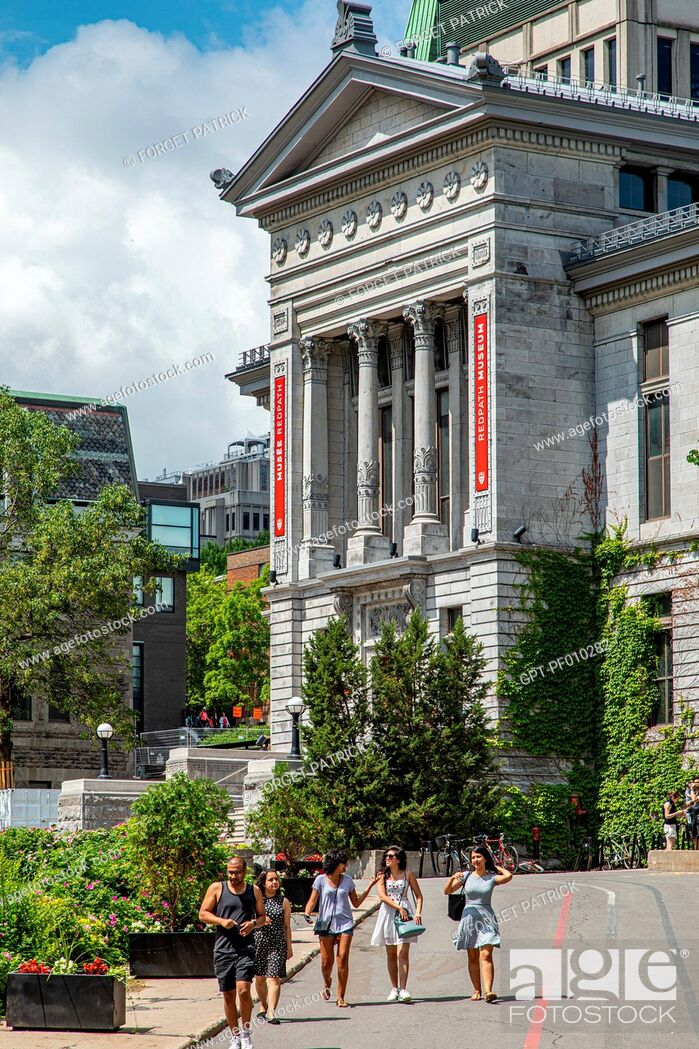 Stock Photo: REDPATH MUSEUM, NATURAL HISTORY MUSEUM AT MCGILL UNIVERSITY, RUE SHERBROOKE, MONTREAL, QUEBEC, CANADA.