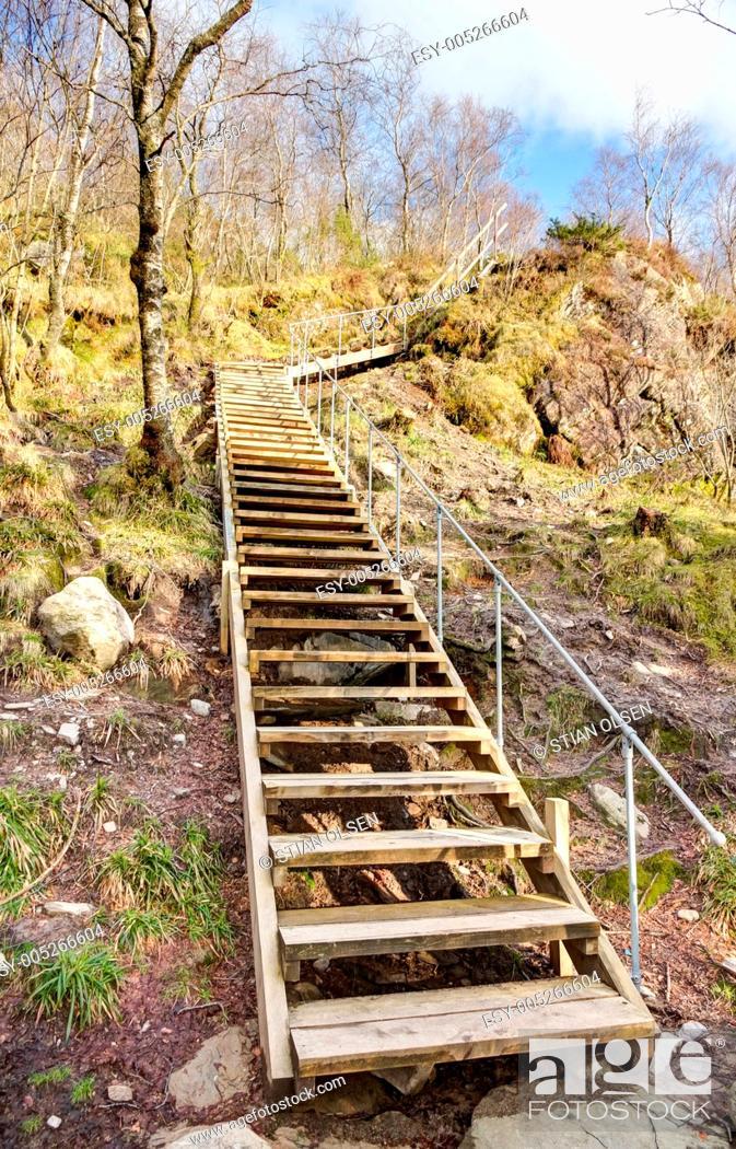 Stock Photo: Stairway in nature.