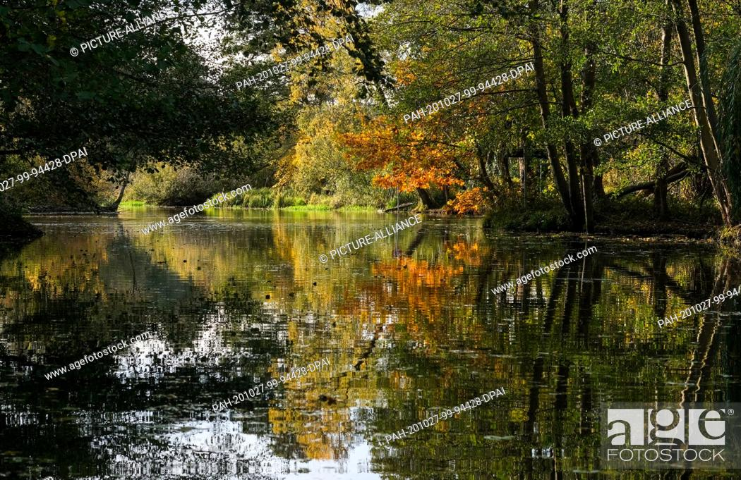 Stock Photo: 25 October 2020, Brandenburg, Schlepzig: Autumnally coloured trees are reflected in a stream in the Spreewald. Photo: Jens Kalaene/dpa-Zentralbild/ZB.