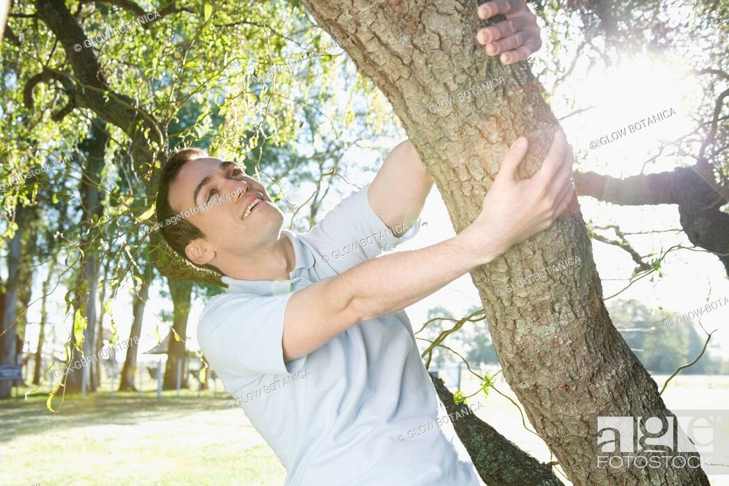Stock Photo: Man swinging from a tree in a park.