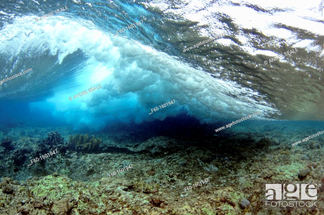 Stock Photo: Wave breaking on reef, seen from below the surface, Palikir Pass, Pohnpei, Federated States of Micronesia.
