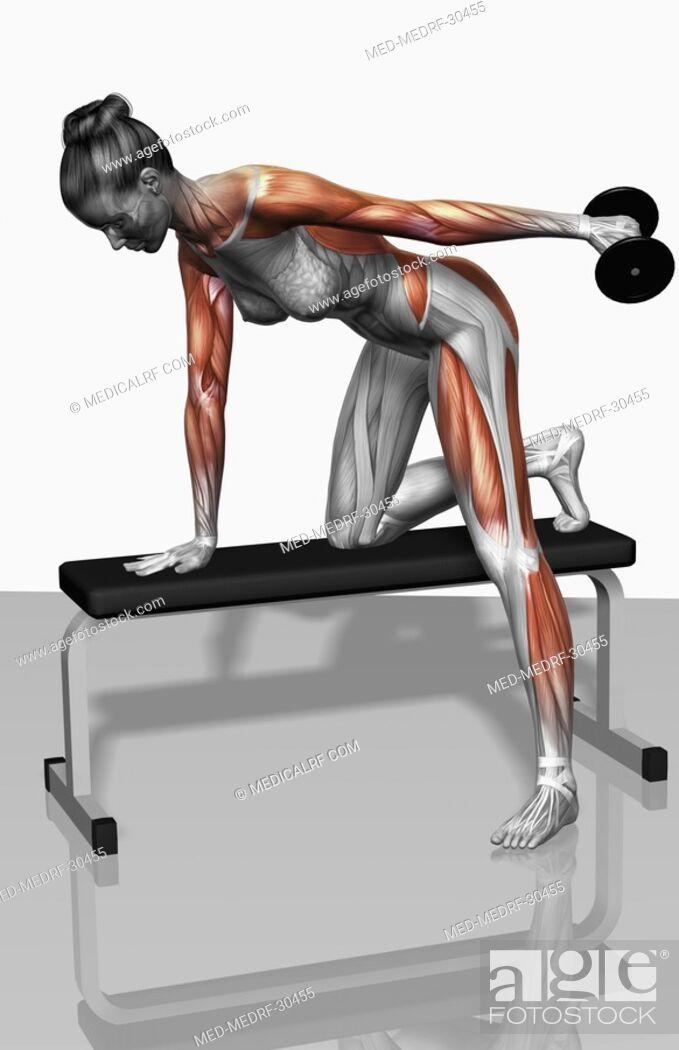 Stock Photo: Dumbbell kickback exercise Part 1 of 2.