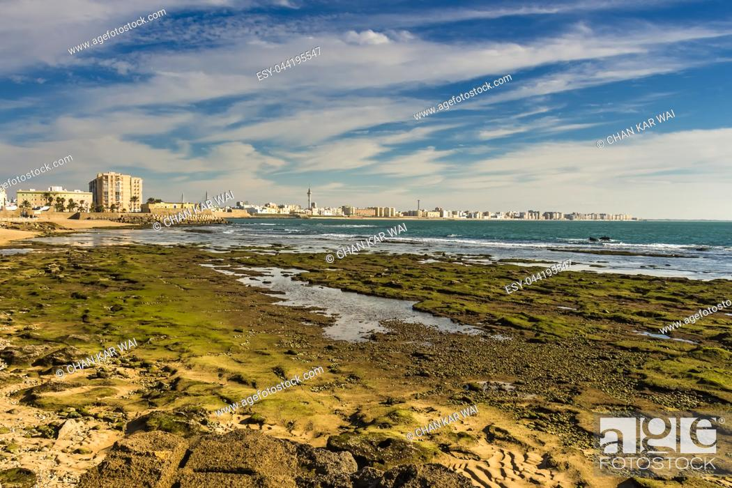 Photo de stock: Moss covered rocks off the shores of Bay of Cadiz.