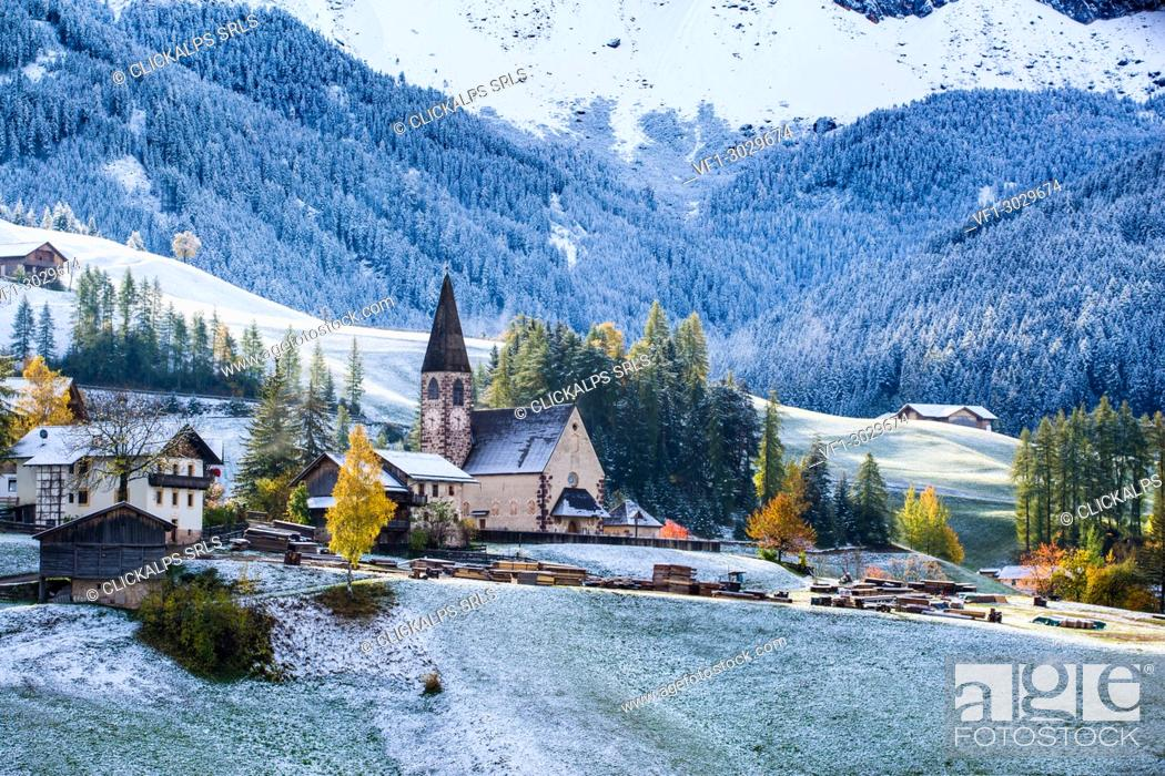 Imagen: Autumn scenic outdoor, foliage and green hills with snowy trees, Funes Valley, Dolomites Alps, Trentino Alto Adige, Italy. .