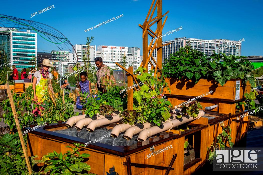 Stock Photo: GARDENING WORKSHOP, LIVING ROOF, URBAN FARMING TAKES UP RESIDENCE FOR THE FIRST TIME ON THE ROOF TERRACE OF THE CITE DE LA MODE ET DU DESIGN.