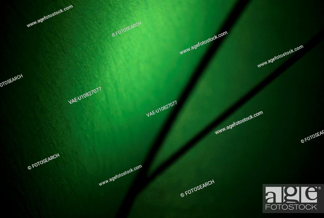 Stock Photo: Green Surface With Stripes.