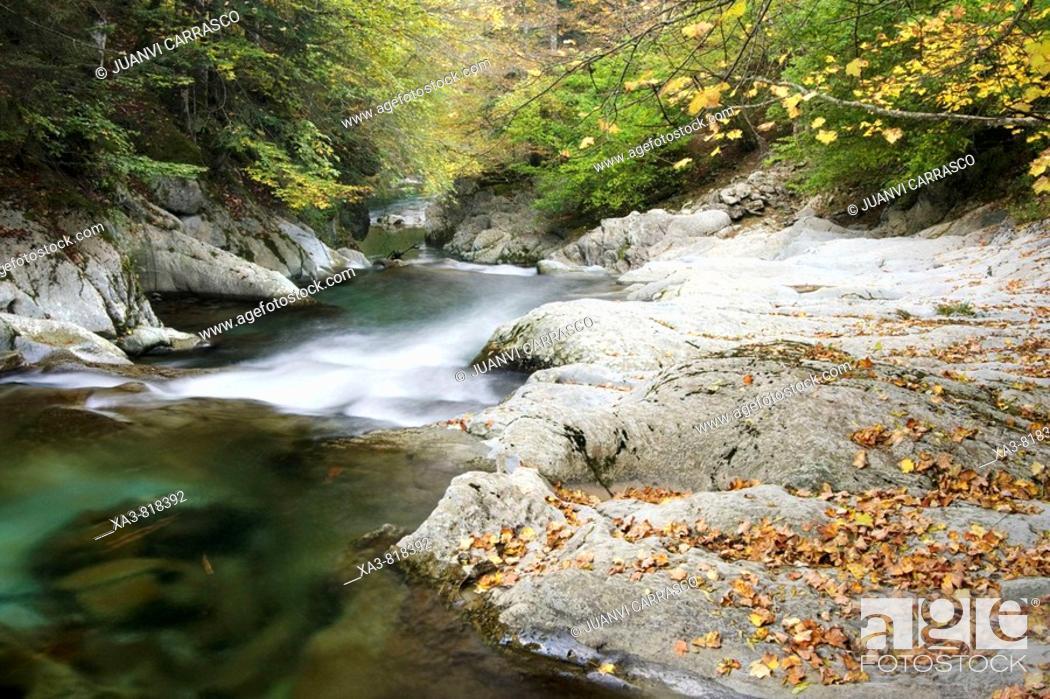 Stock Photo: Urbeltza river, Selva de Irati, Navarra, Spanish Pyrenees.