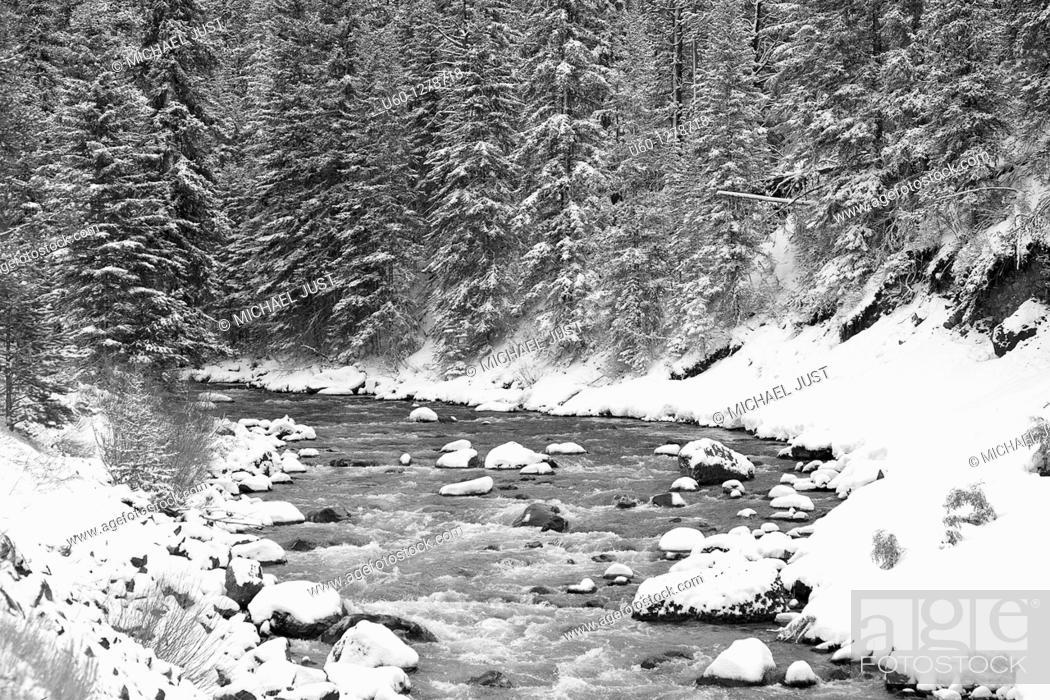 Stock Photo: Fresh snow along the Lamar River at Yellowstone National Park, Wyoming.