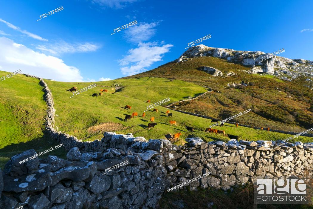Stock Photo: Landscape in Astrana, Soba Valley, Valles Pasiegos, Cantabria, Spain, Europe.