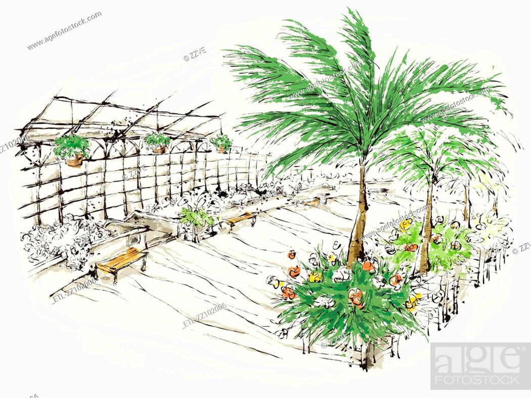 Stock Photo: Plants in nursery.