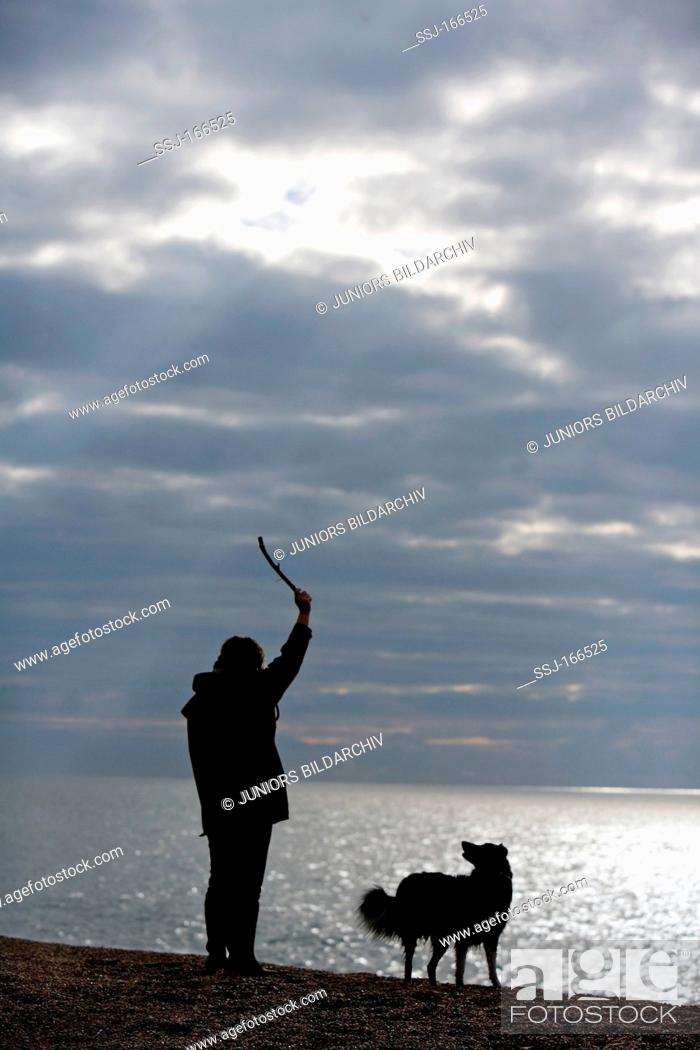 Stock Photo: woman and dog at the shore.