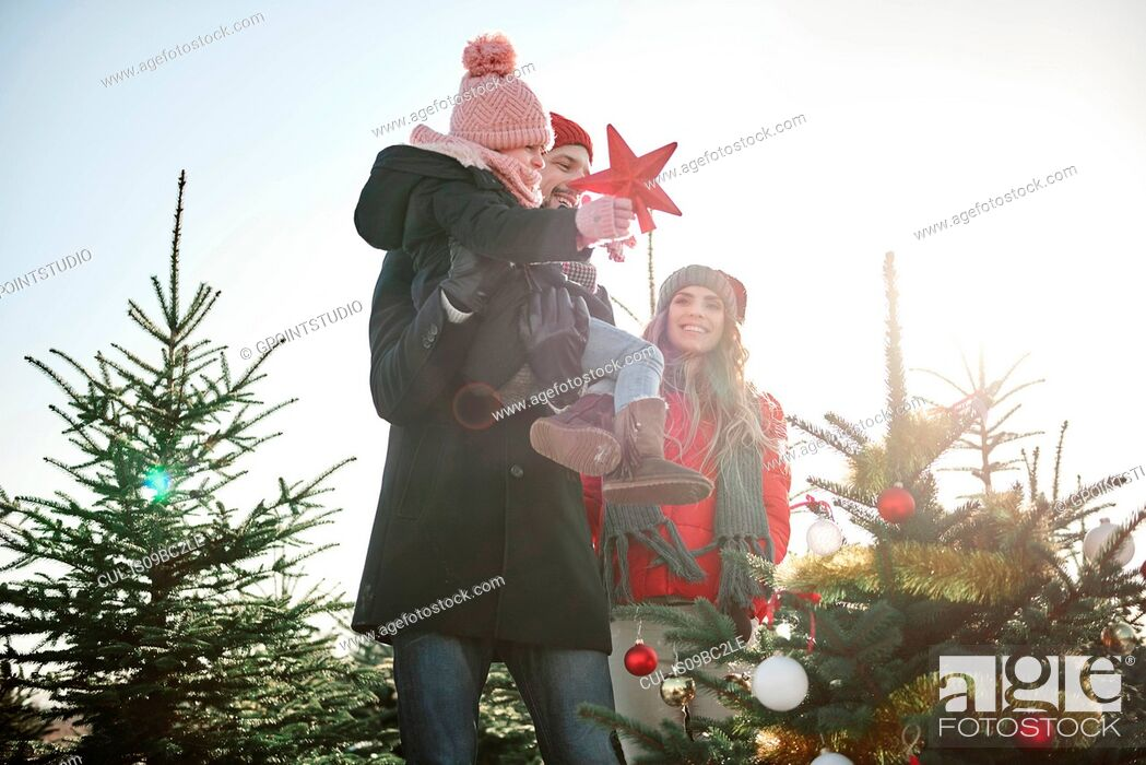 Imagen: Girl and parents placing star on forest christmas tree.