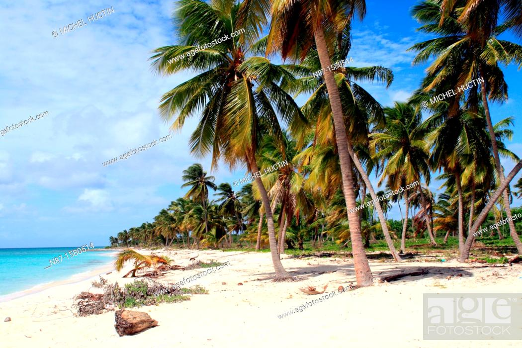 Stock Photo: Deserted beach, Saona Island, Dominican Republic.