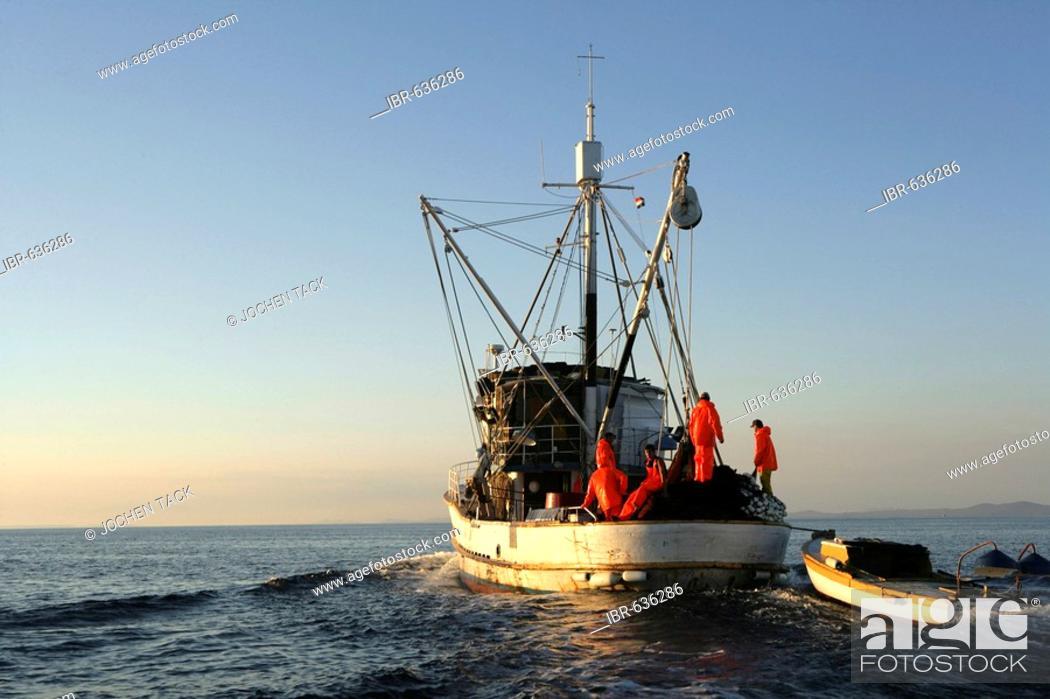 Stock Photo: Sardine fishing boat Jastreb, based in Kali on Ugljan Island, at a fishing site off of Pag Island in the Adriatic, Croatia, Europe.