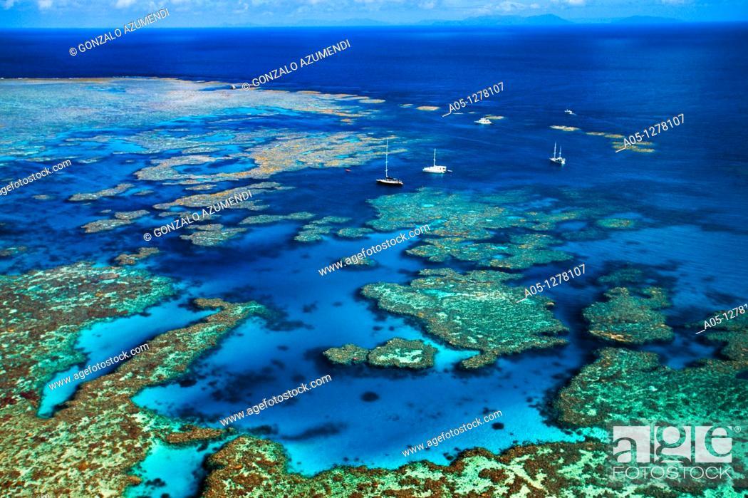 Stock Photo: Bait Reef, Great Barrier Reef, Queensland, Australia (August, 2000).