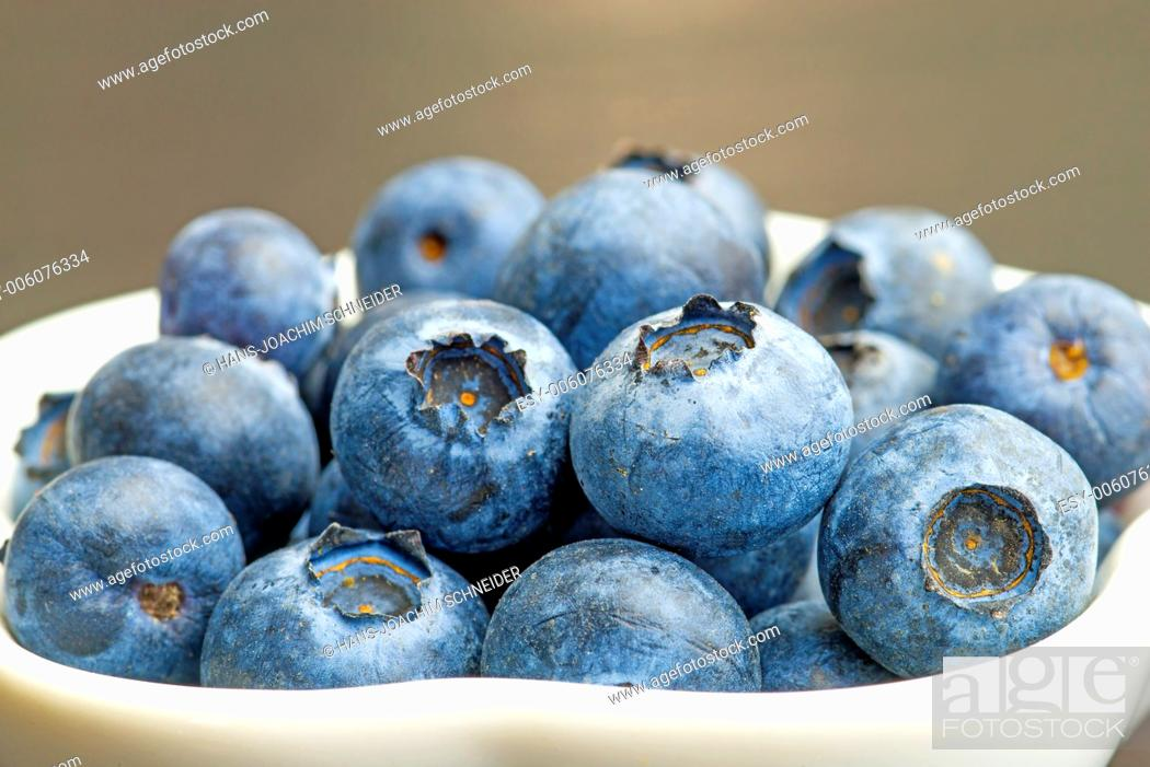 Stock Photo: blueberry.