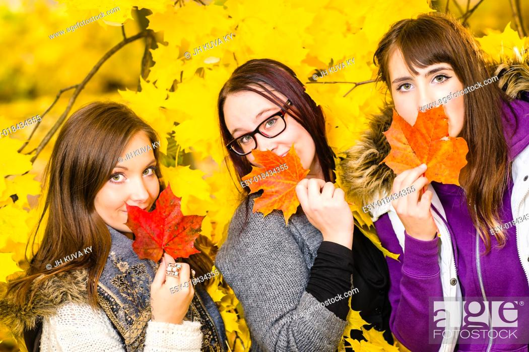 Stock Photo: Sisters posing together on autumnal park, maple leaves on background.