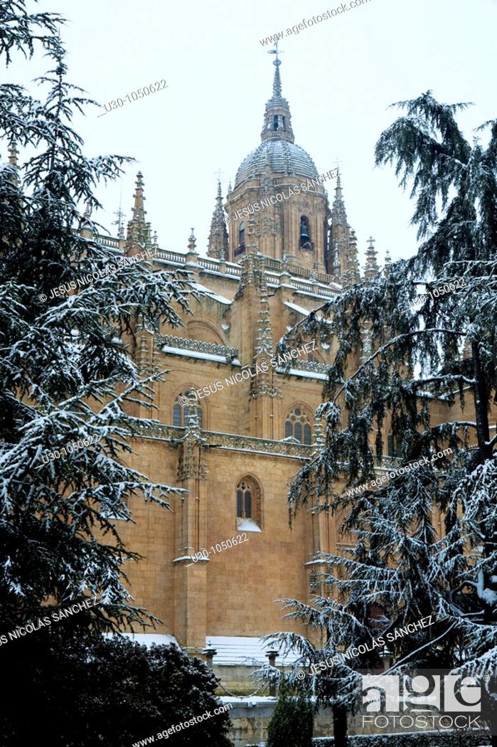 Imagen: New Cathedral of Salamanca city, and Anaya Square in winter  World Heritage City in Castilla y León, Spain.