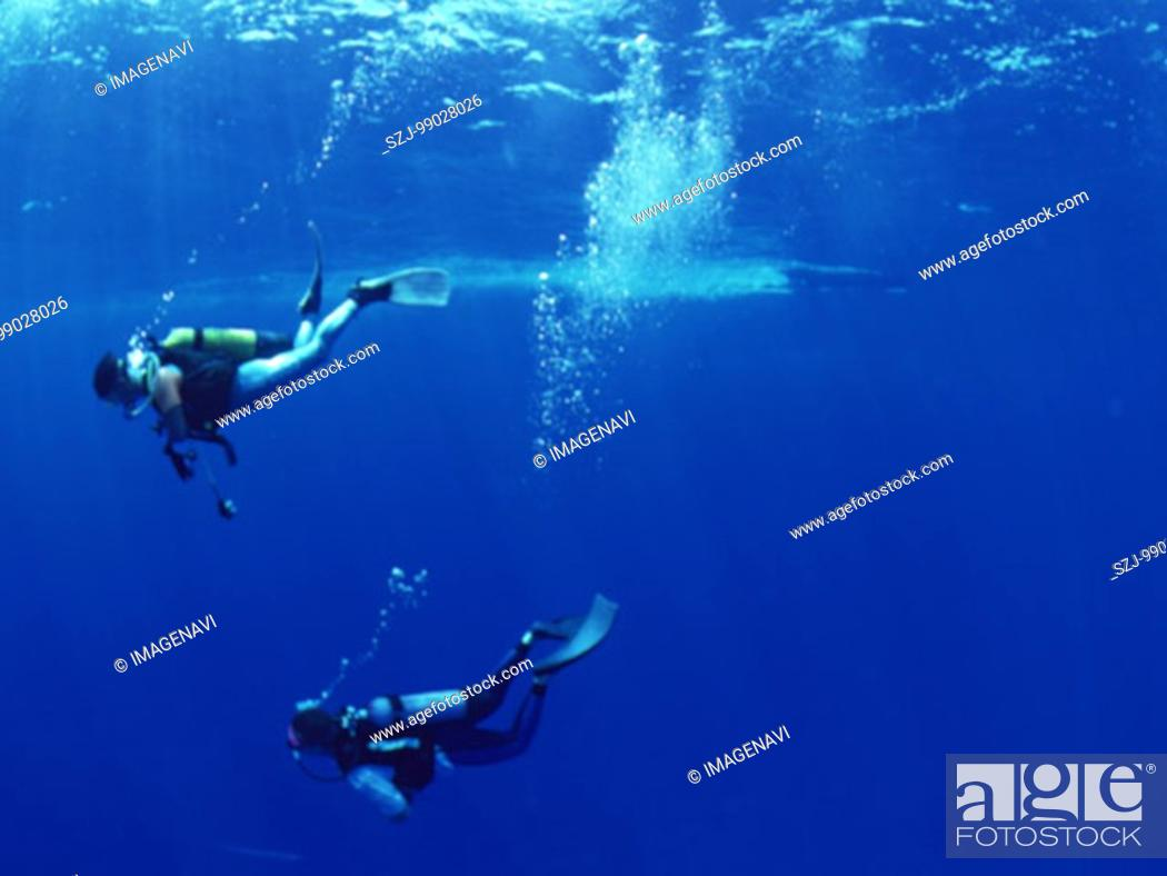 Stock Photo: Diving.