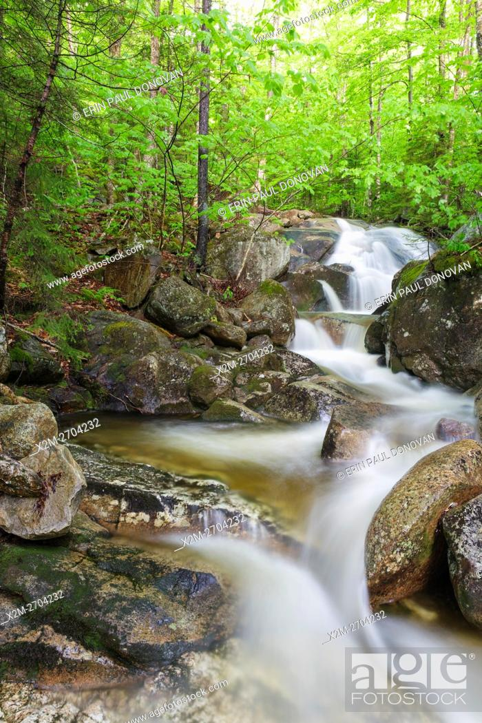 Stock Photo: Clough Mine Brook, a tributary of Lost River, in Kinsman Notch of Woodstock, New Hampshire USA during the spring months.