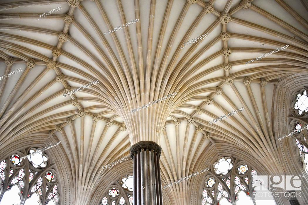 Imagen: Fan Vaulted Ceiling, Chapter House, Cathedral Church of Saint Andrew, Wells Cathedral, Wells, England.