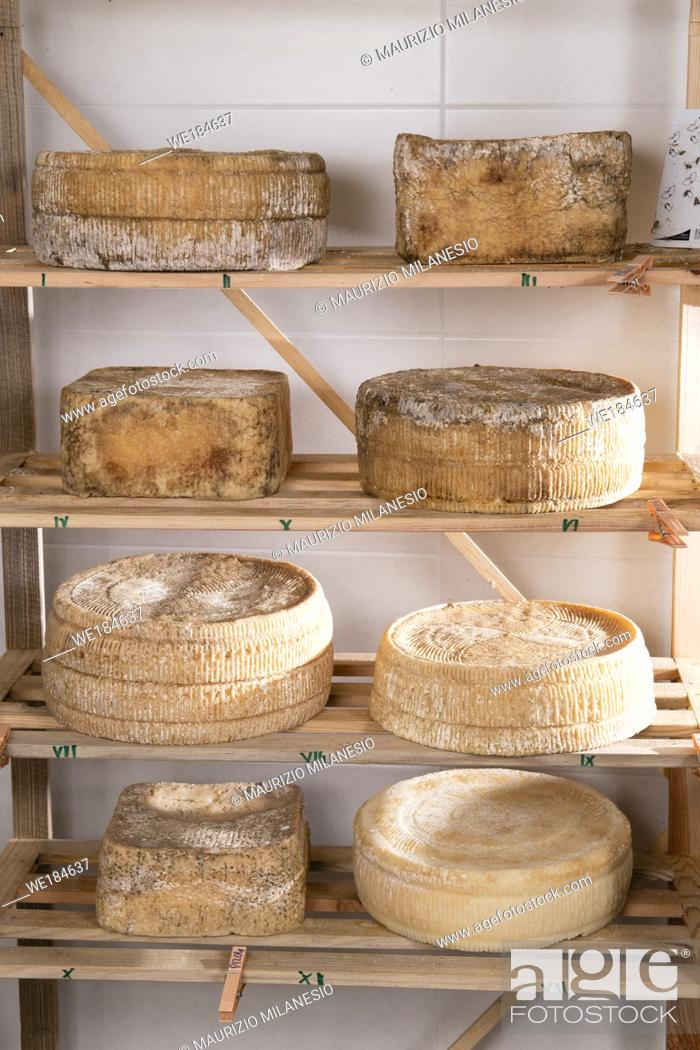Stock Photo: Forms of aged cheese on the shelf for maturing.