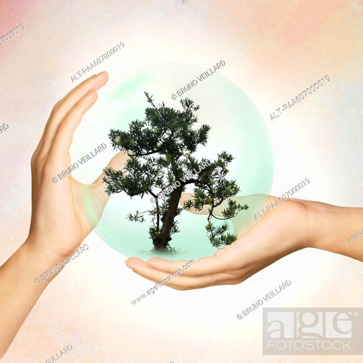 Stock Photo: Environmental protection requires cooperation.
