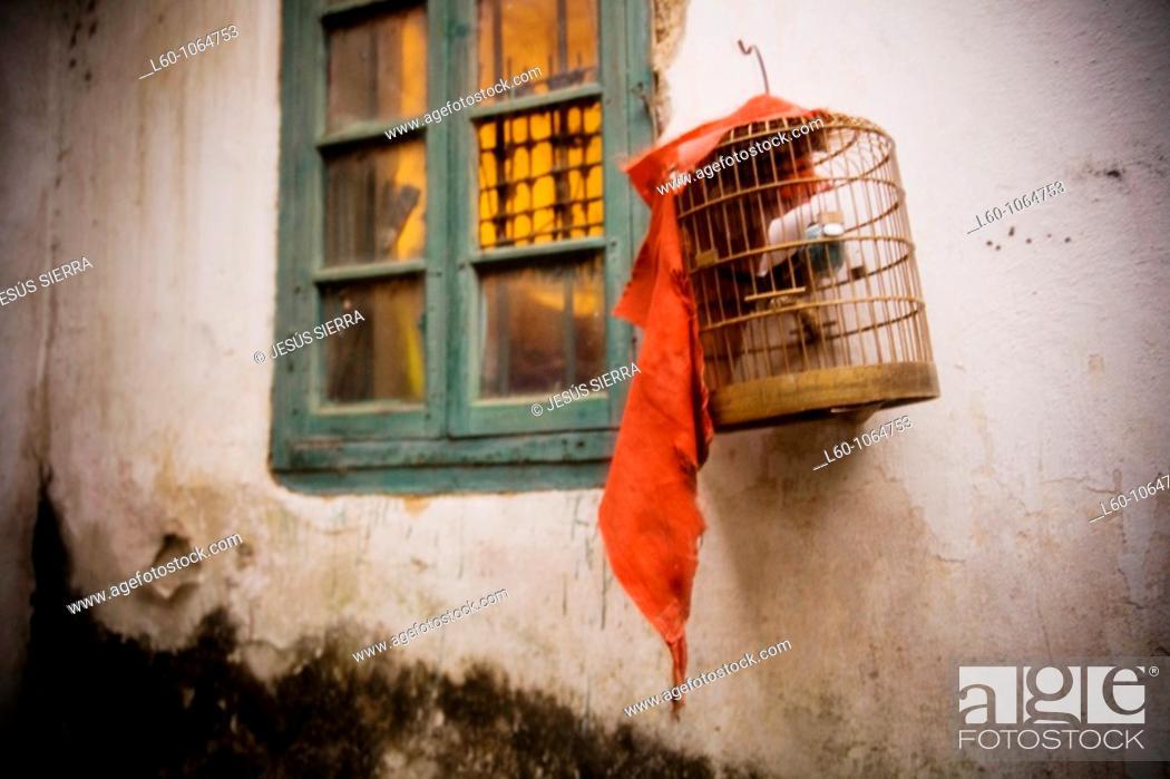 Stock Photo: Yangshuo, Guangxi, China.