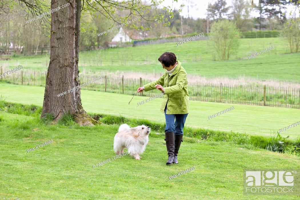 Stock Photo: Woman playing with her dog.