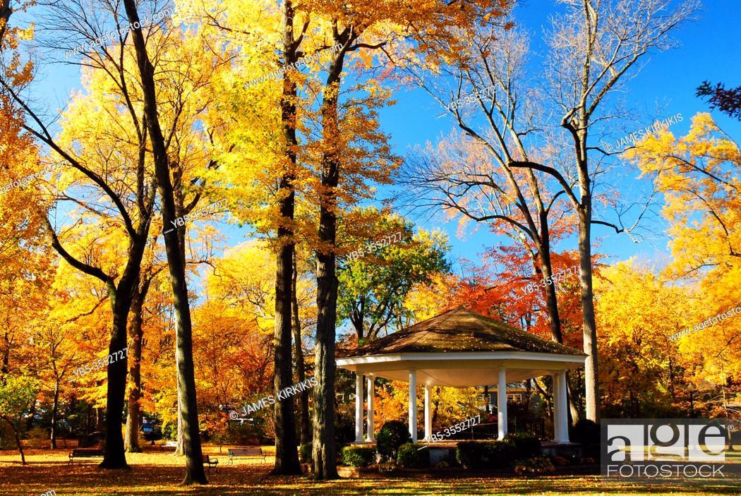 Imagen: A gazebo sits under a canopy of fall foliage.