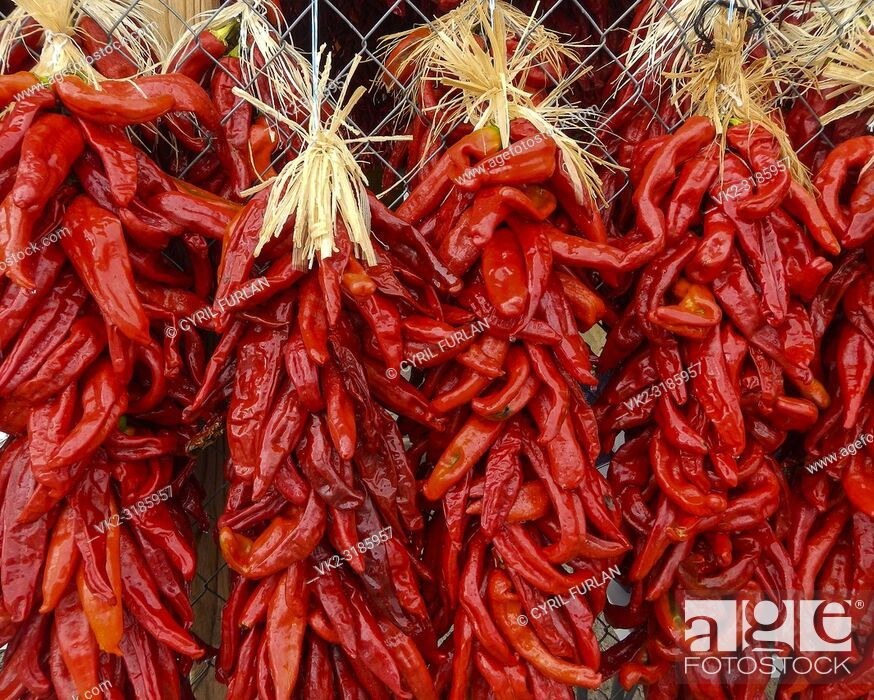 Stock Photo: Chili Peppers Hatch New Mexico, Chili capital of New Mexico.