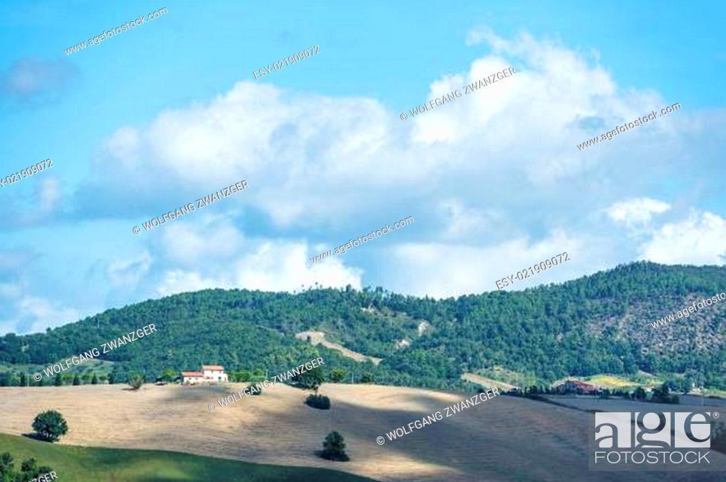 Imagen: Beautiful landscape Tuscany.