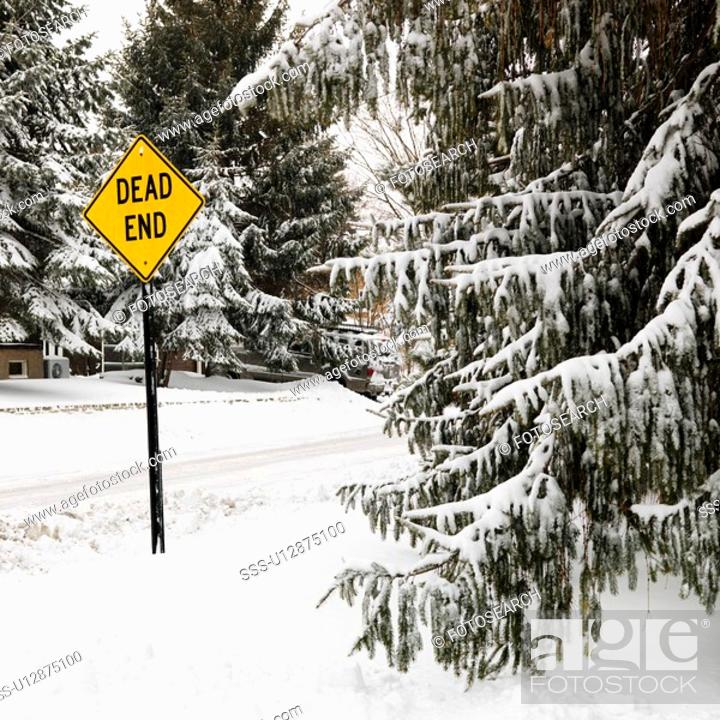 Stock Photo: Snowy street scene in suburb with evergreen trees and dead end road sign.