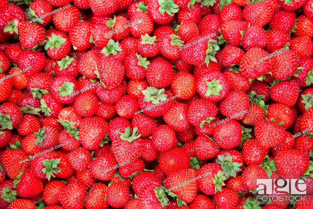 Stock Photo: strawberries, tammelantori market, tampere, finland, europe.