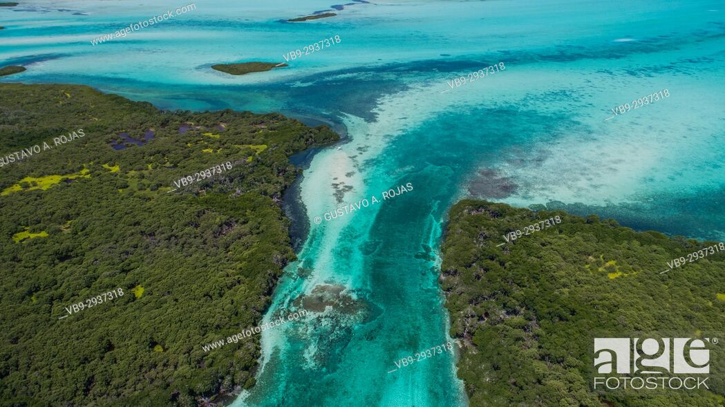 Stock Photo: Aerial View mangroves at Boca de Bobos Los Roques Nat. Park Venezuela.