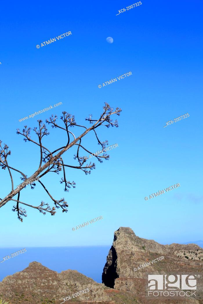 Stock Photo: volcanic rock formations in Anaga mountains. Tenerife island, spain.