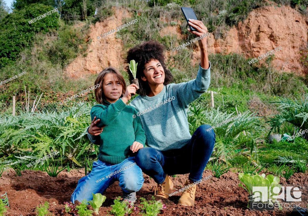 Stock Photo: Mother taking selfies of planting lettuce seedlings in an vegetable garden, with her son.