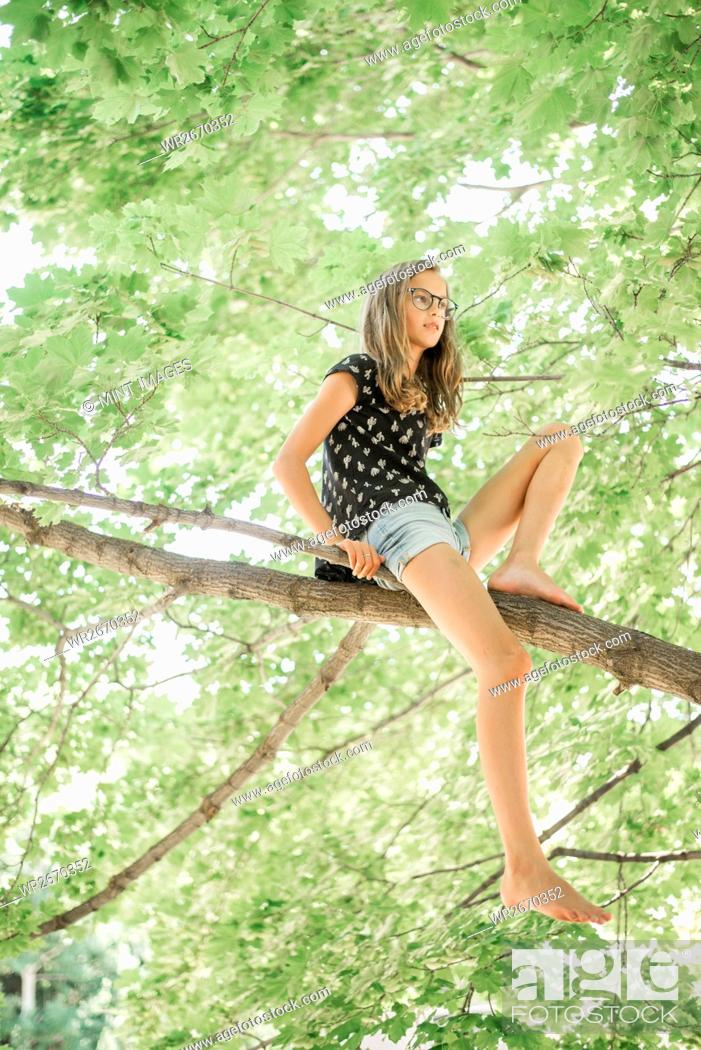 Imagen: A young girl in shorts sitting on a high tree branch under a canopy of green leaves.